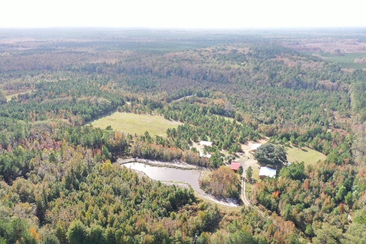 Pineland Jasper County Recreational Farm