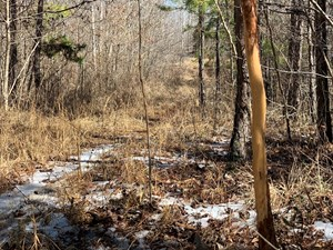 HUNTING LAND IN SOUTHERN TENNESSEE!