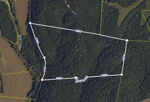 74 ACRES FOR SALE IN SOUTHERN TENNESSEE