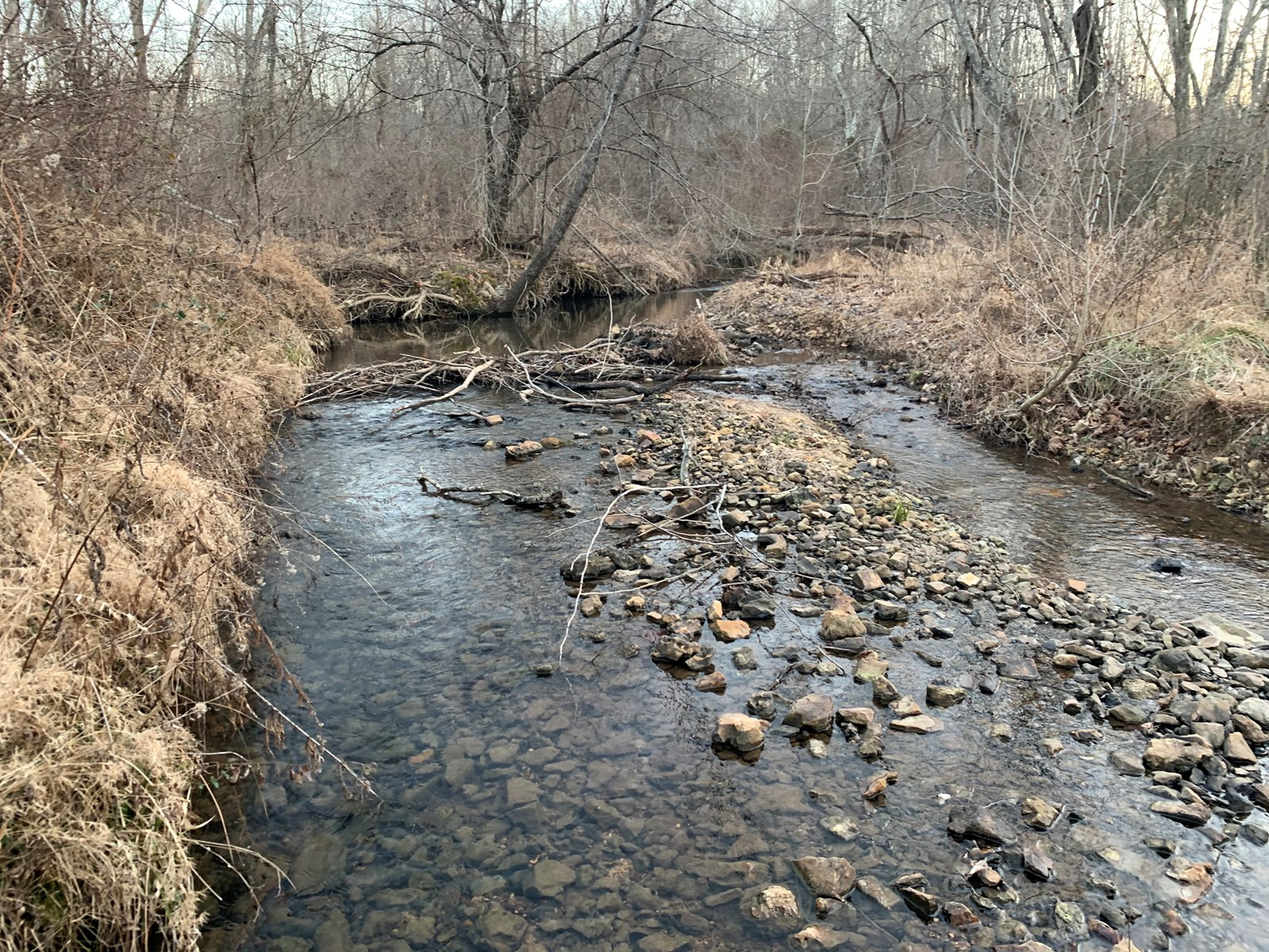 183 Acres for sale in Wayne County