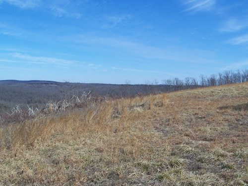 7.58 Acre Lot For Sale In Arkansas Ozarks