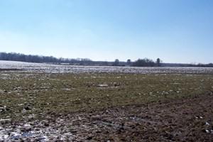 FARM LAND FOR SALE HWY 70N CROSSVILLE TN 38571
