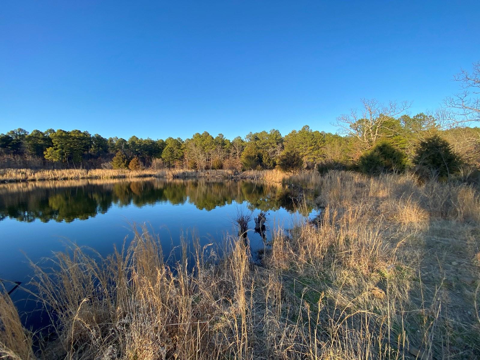 Hunting Land for Sale-SE Oklahoma Land for sale Wilburton,OK