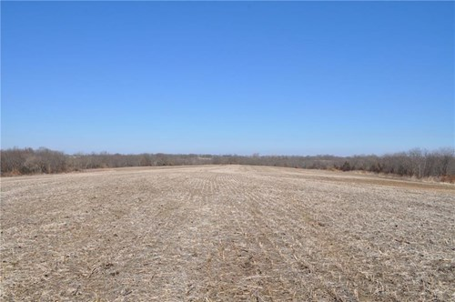 Quality Farm in Daviess County - Great Investment & Hunting