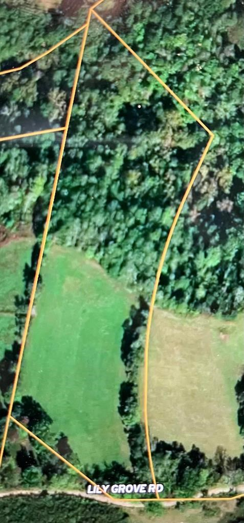 8 Acres Of Unrestricted Land in East TN For Sale