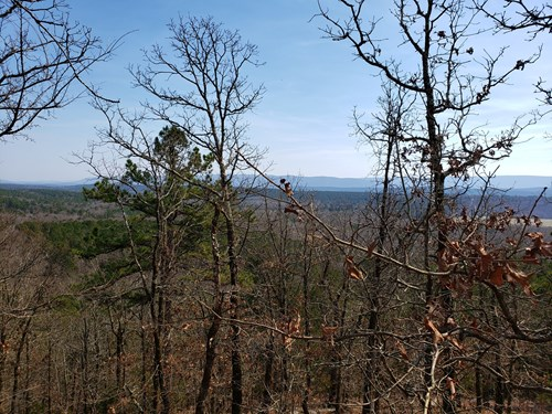 Walker Mountain Land & Cabin Site Adjoining National Forest