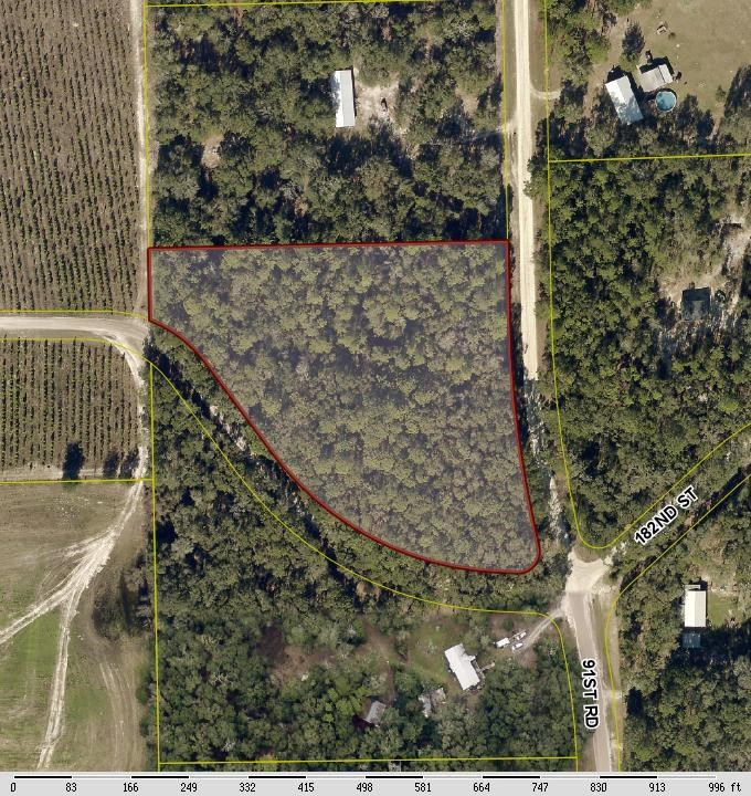 4 HIGH & DRY WOODED ACRES FOR SALE IN MCALPIN, FL