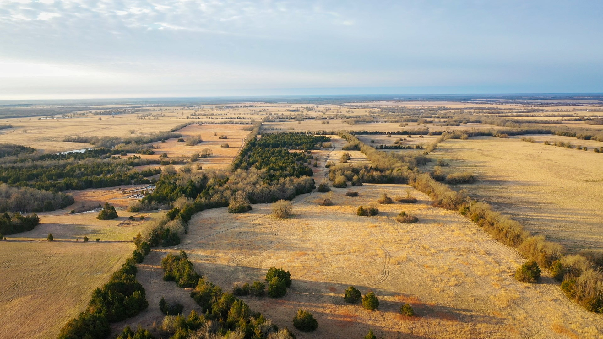 Recreational Land For Sale In Clarksville Texas