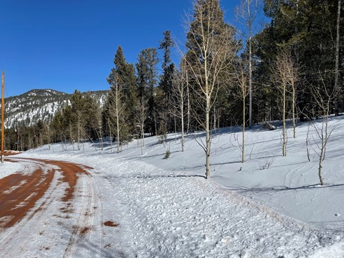 Mountain Property for Sale near Divide Colorado