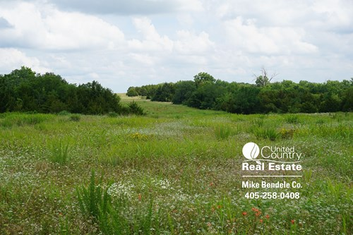 For Sale 11 Acres +/- Cushing, OK Hunt & Play Here