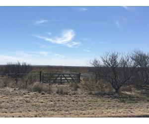 709 AC I-10 Graybill Ranch Fort Stockton Pecos Co