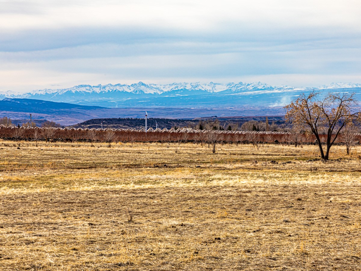 Western Colorado Irrigated Land With Homesite