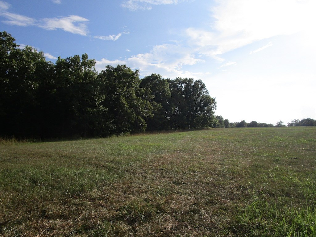 Land for Sale in South Central Missouri - Just Outside Town