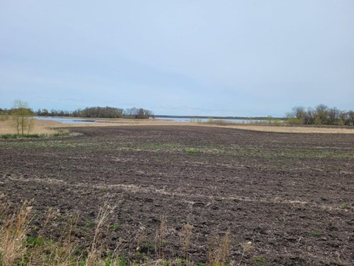 OTTER TAIL COUNTY LAND AUCTION - HUNTING/RECREATION/LAKE