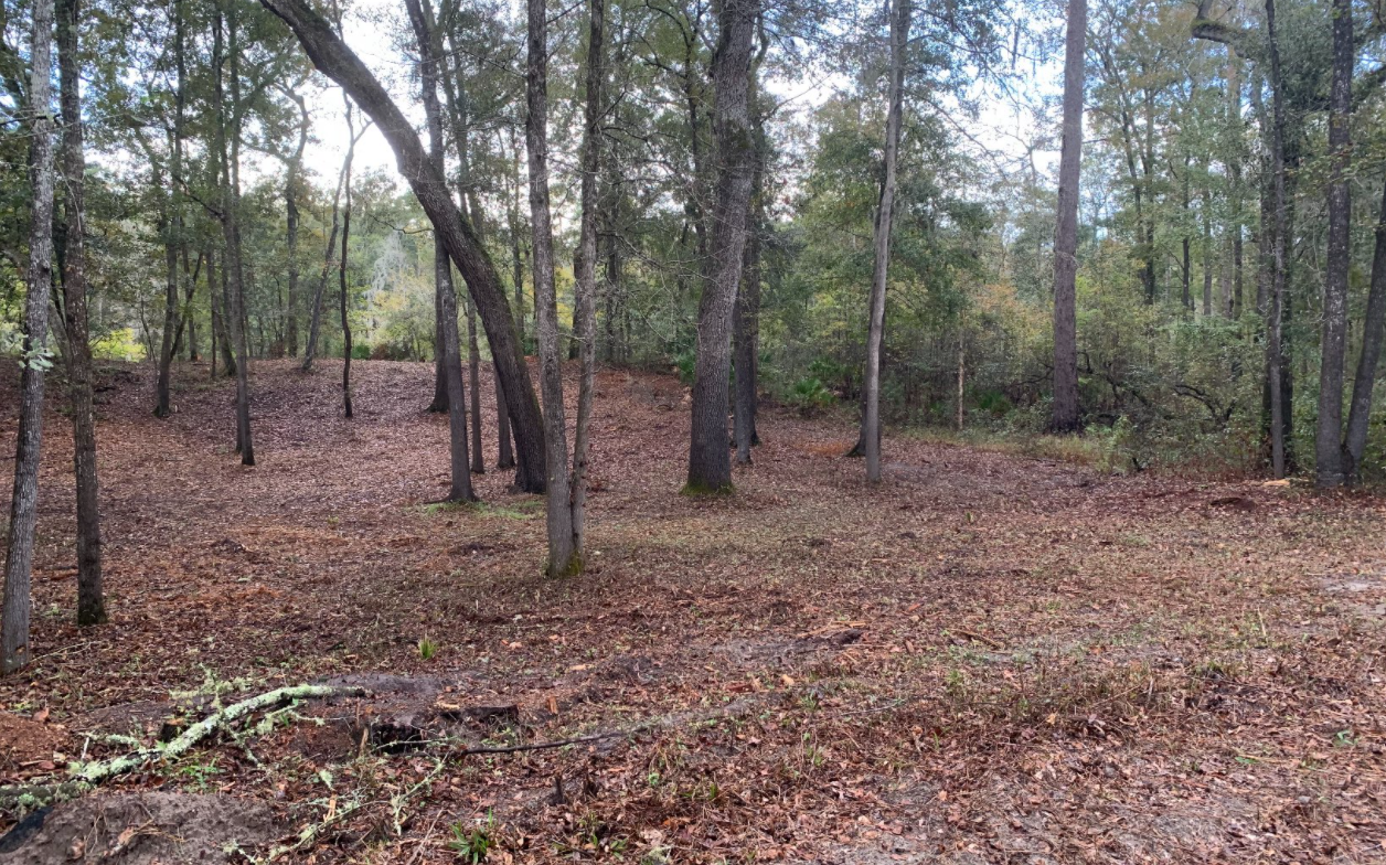 Suwannee River Property with No Restrictions in Live Oak, FL