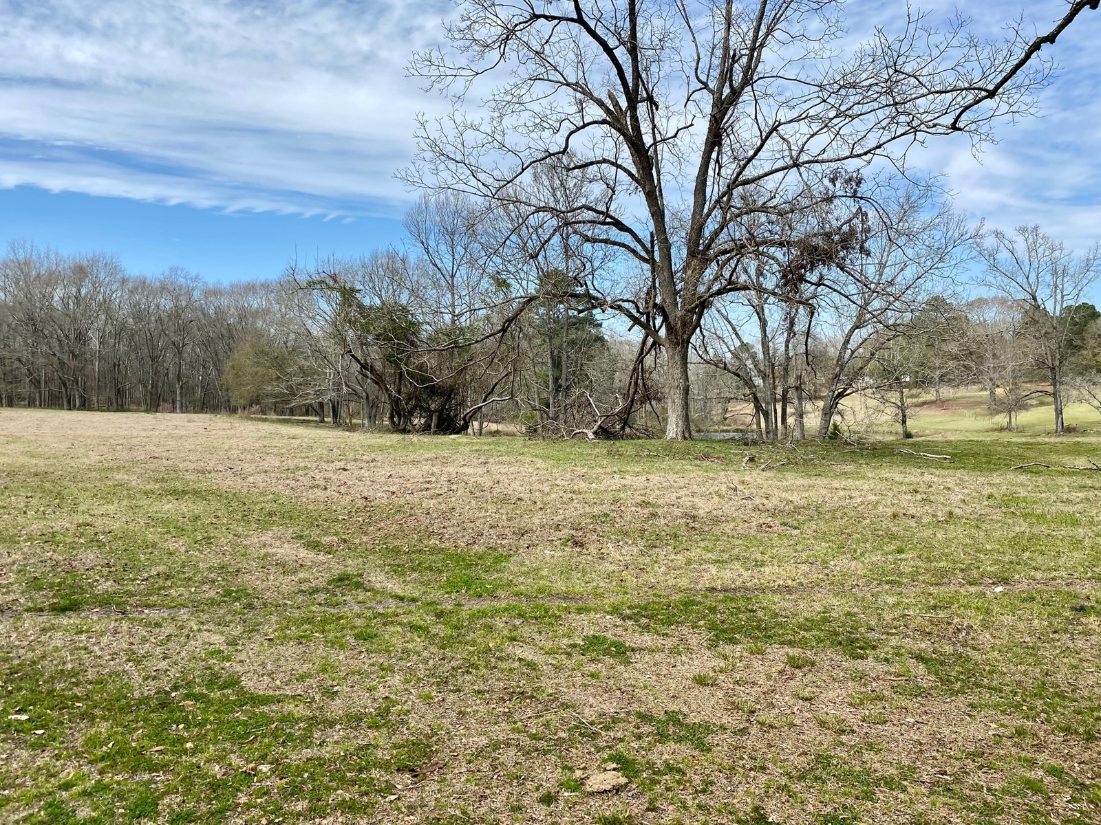 4.5 +/- Acres in Crenshaw County