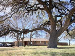 IRION COUNTY HOME FOR SALE IN MERTZON, TEXAS.