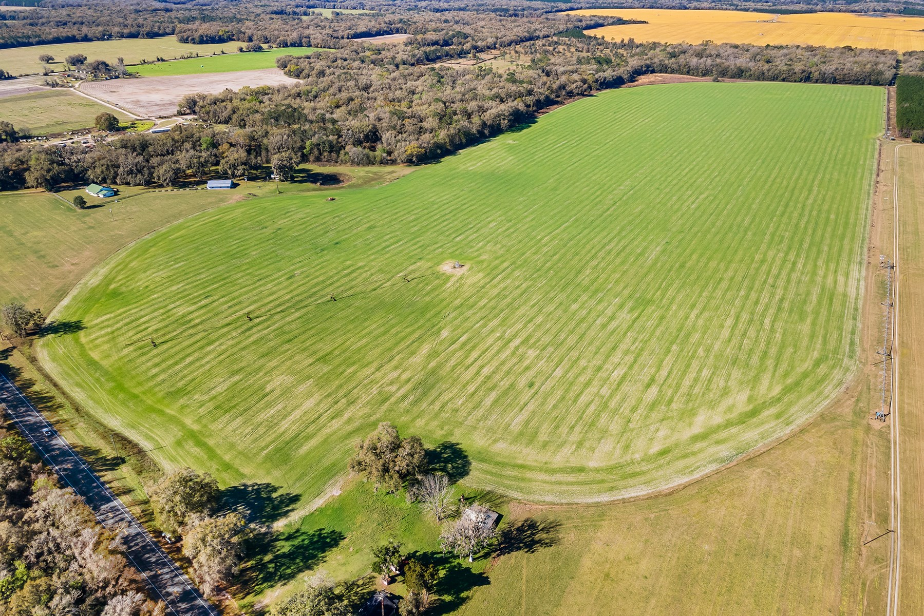 OLD TOWN, FL! FAMILY HOMESTEAD ON 127 ACRES OF PASTURELAND!
