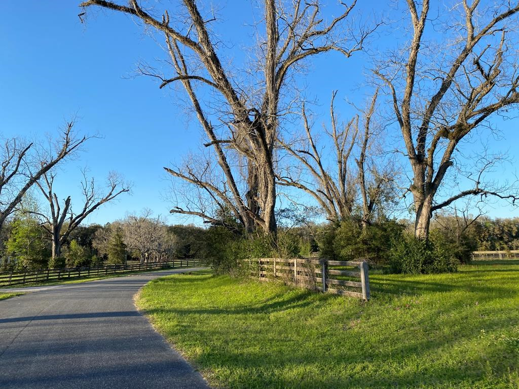 BEAUTIFUL ACREAGE IN GILCHRIST COUNTY!