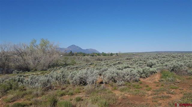 Land for Sale in Cortez Colorado