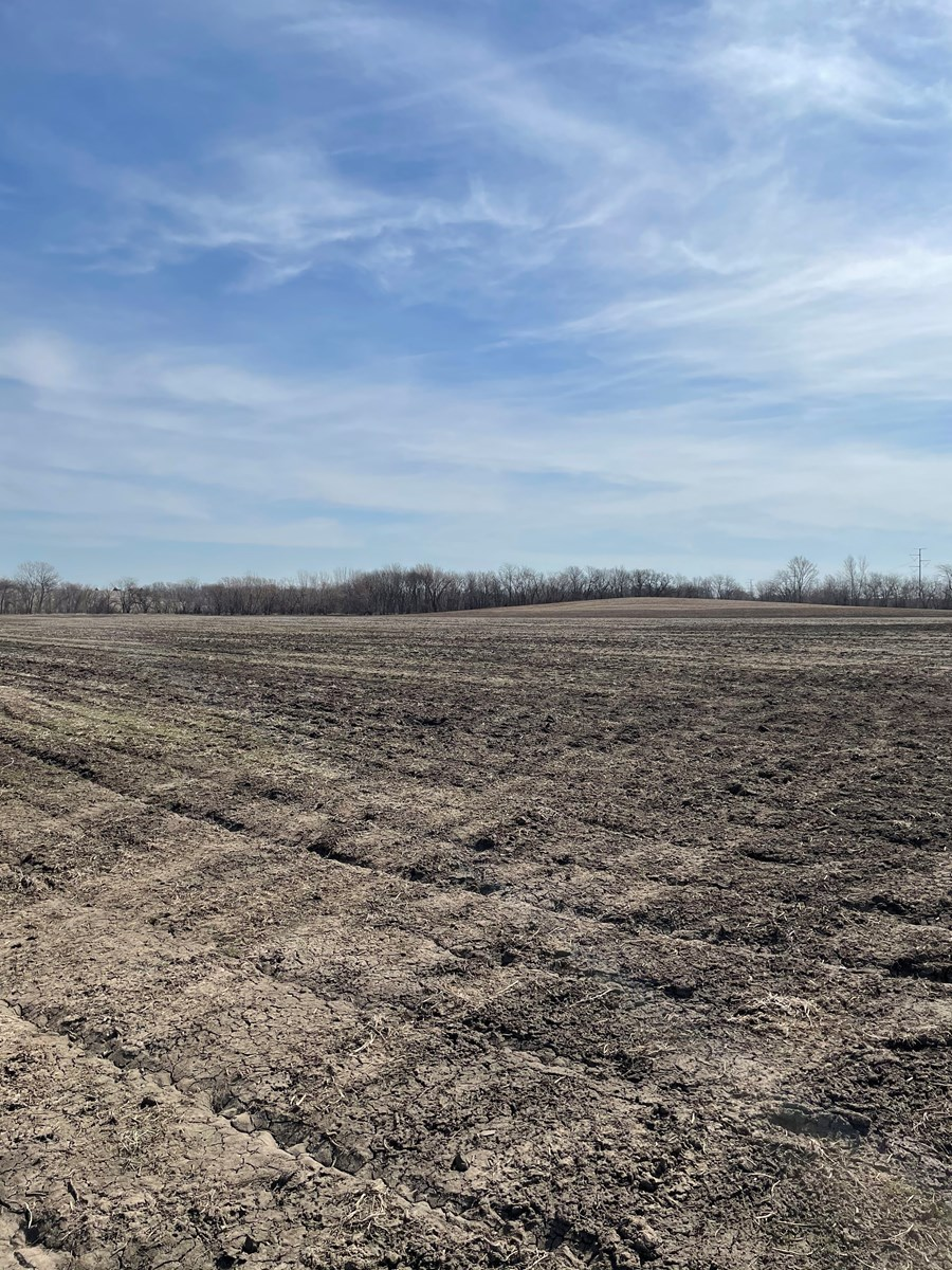 New Listing!! DeKalb County MO Bottom and Second Bottom Land