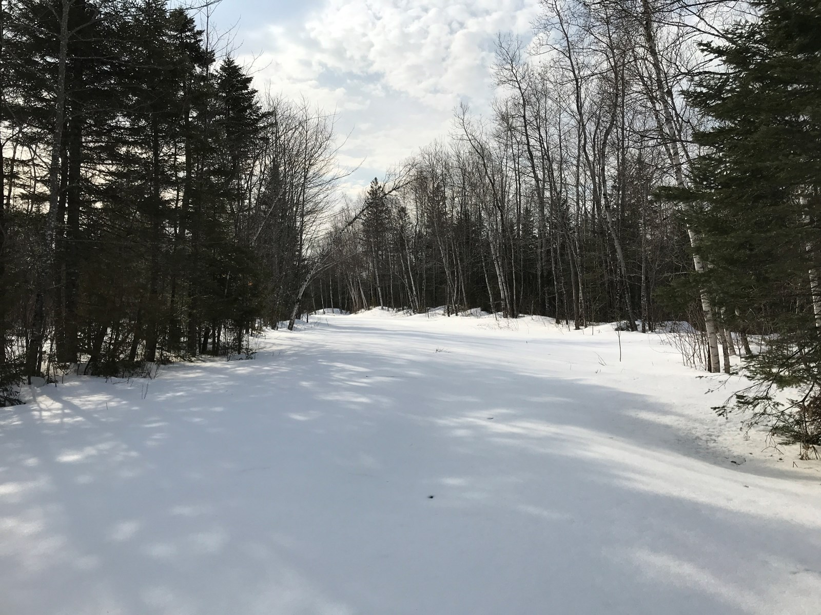 Land for sale in Aroostook County