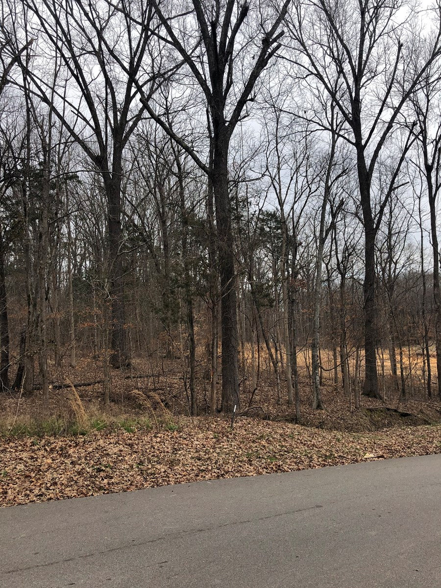 LAND FOR SALE NEAR THE TENNESSEE RIVER – FISHING, BOATING
