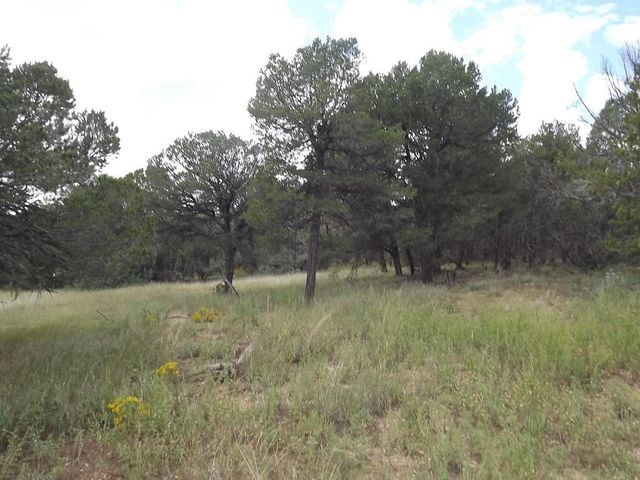 Central New Mexico 20 Acres Remote, Private, Beautiful Land