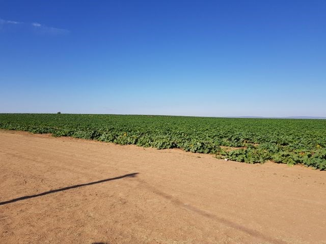 Santa Fe County, New Mexico, 40-Acre Irrigated Farm