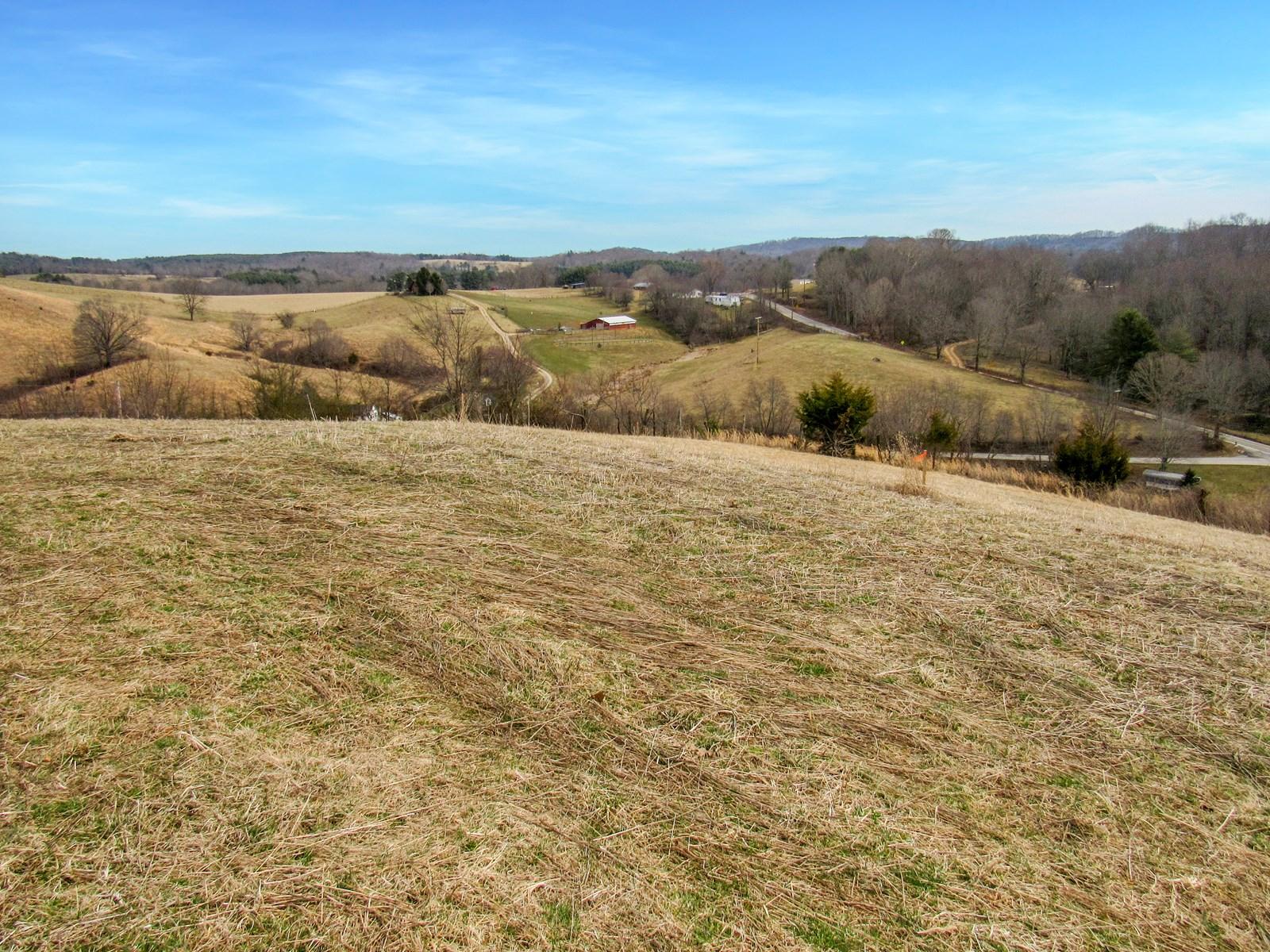 Land for Sale in Pilot VA