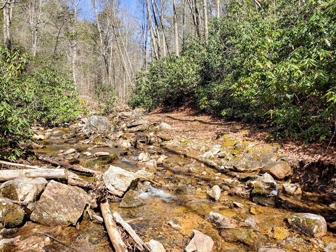 Hunting Land for Sale in Dugspur VA!