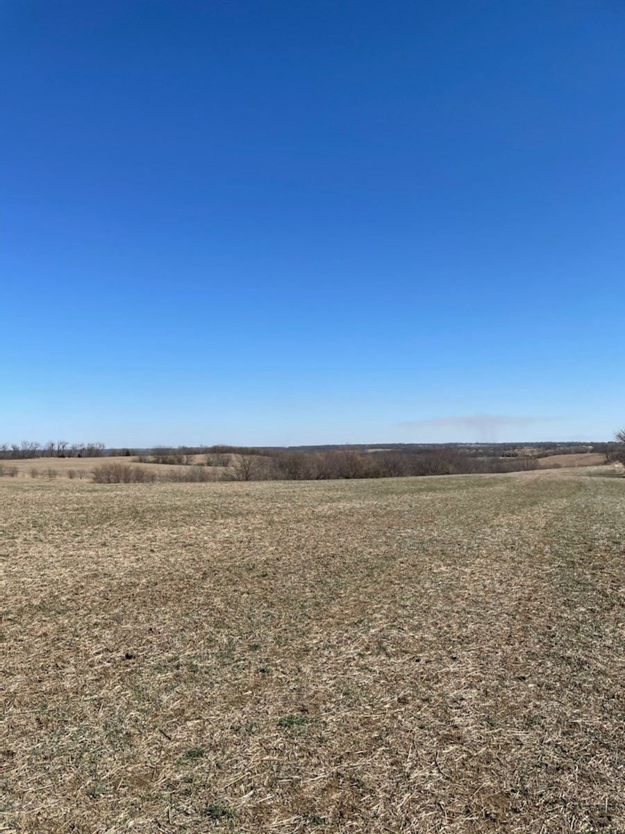 Hard to Find Farm in Caldwell Missouri - Great Investment