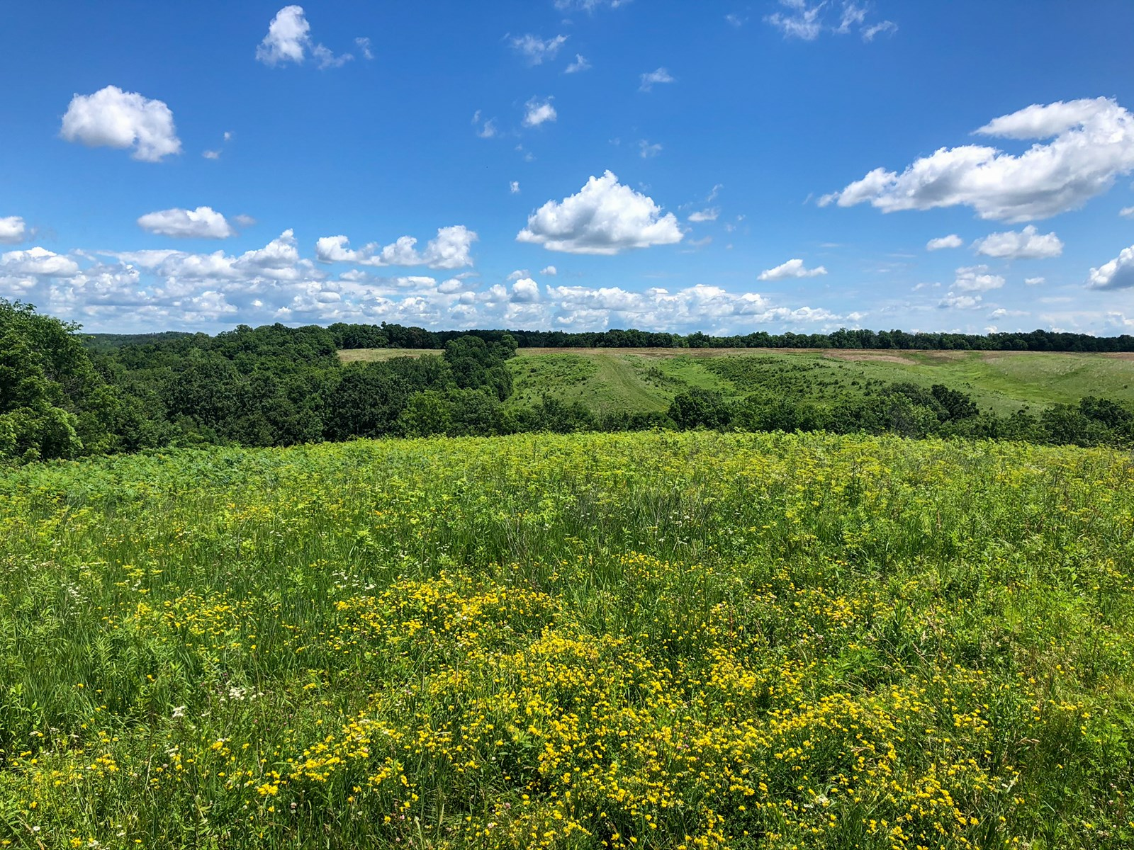Lucas County Hunting & Recreational Property for Sale