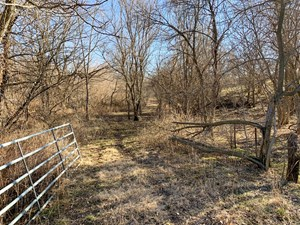 HEAVILY TIMBERED HUNTING TRACT FOR SALE