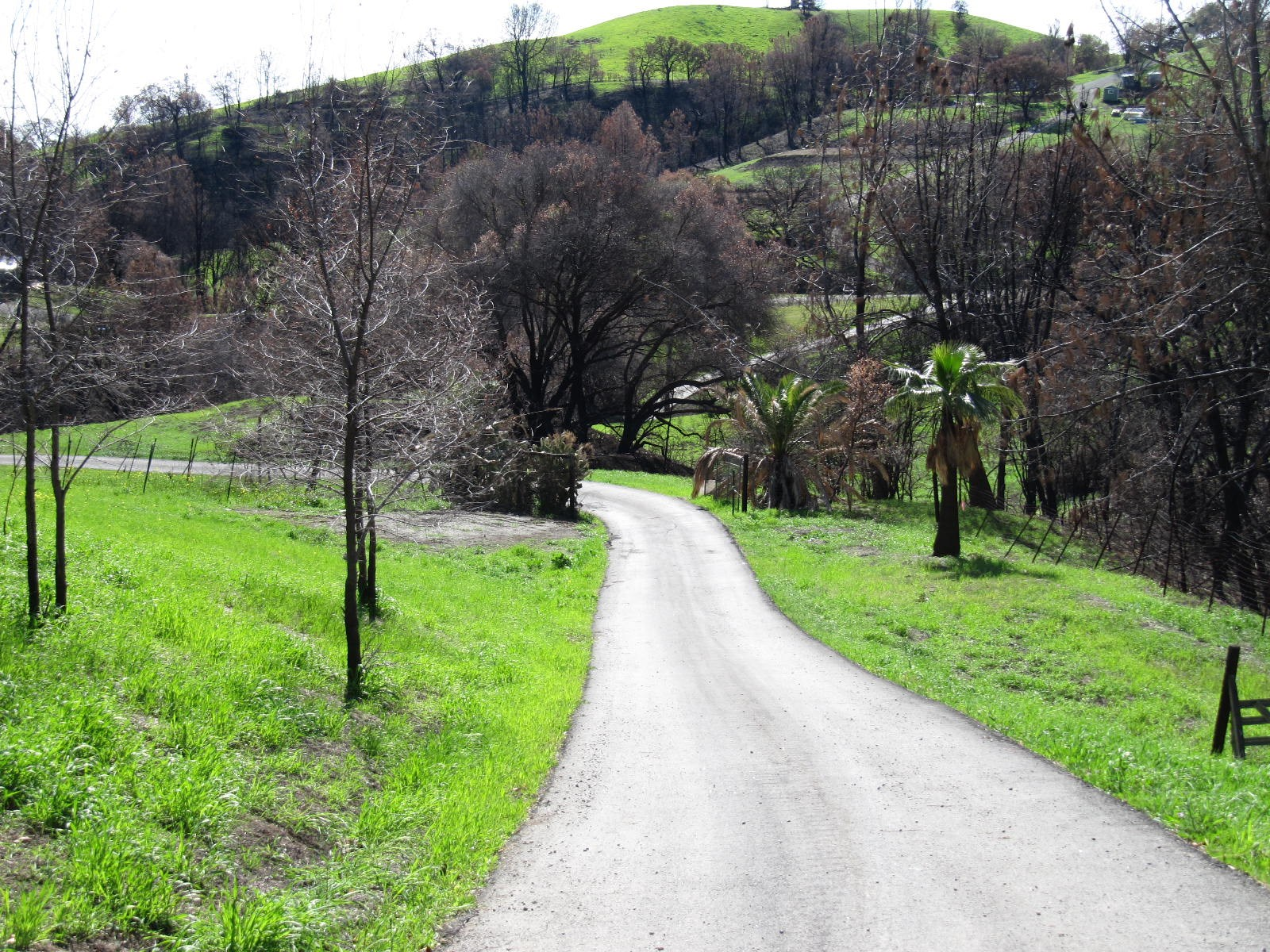 Northern California Vacant Land to Build Home For Sale
