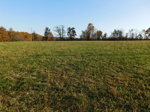 LAND BORDERING OZARK NATIONAL FOREST VIEWS PASTURE FOR SALE