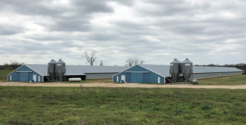 East Texas Broiler Poultry Farm For Sale