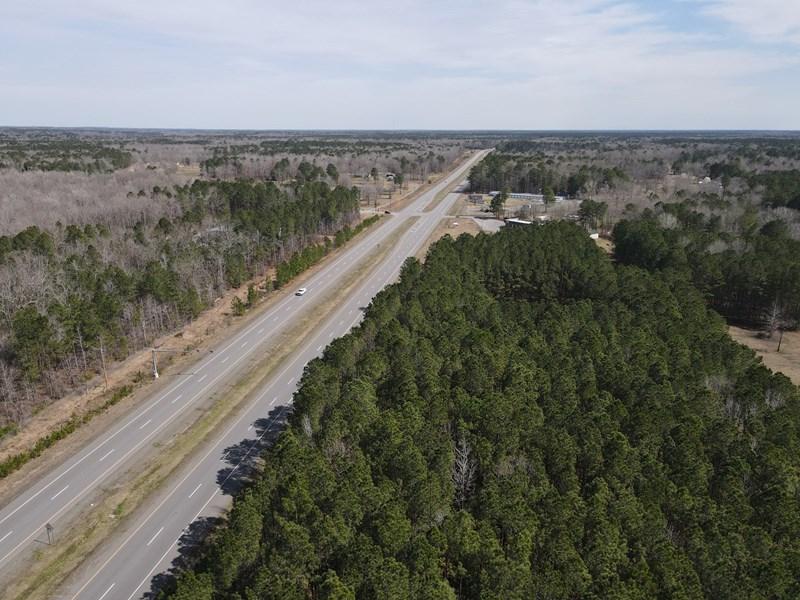 Timberland along highway