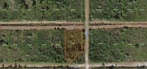 0.55 ACRE LOT, VACANT LAND, CENTRAL FLORIDA, COUNTRY LIVING