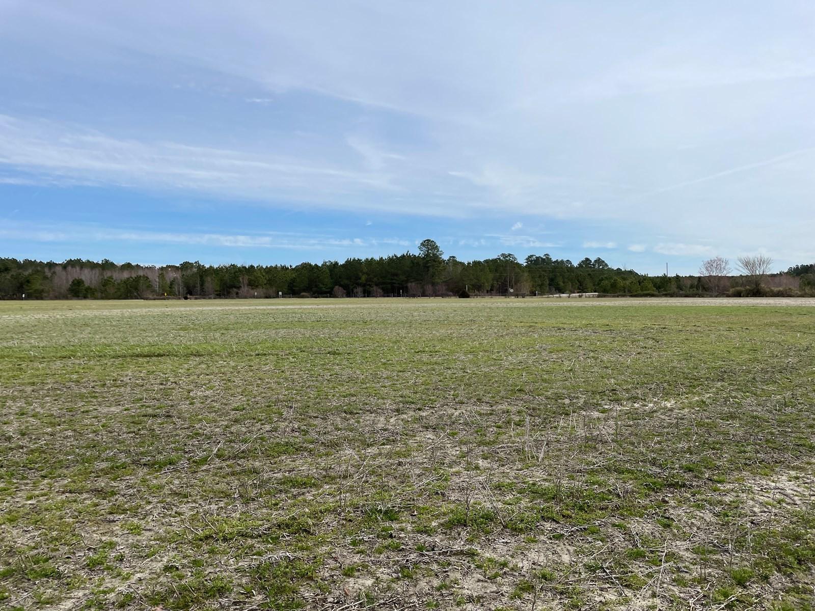 Washington County NC Farmland/Timberland for Sale
