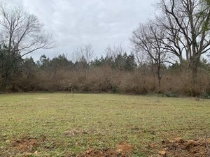 HUNTING LAND FOR SALE AMITE COUNTY CENTERVILLE MISSISSIPPI