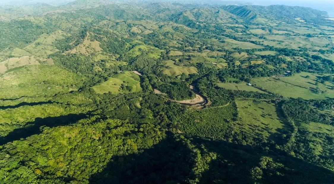 11.5 HECTARES LAND FOR SALE IN CAÑAS PEDASI PANAMA