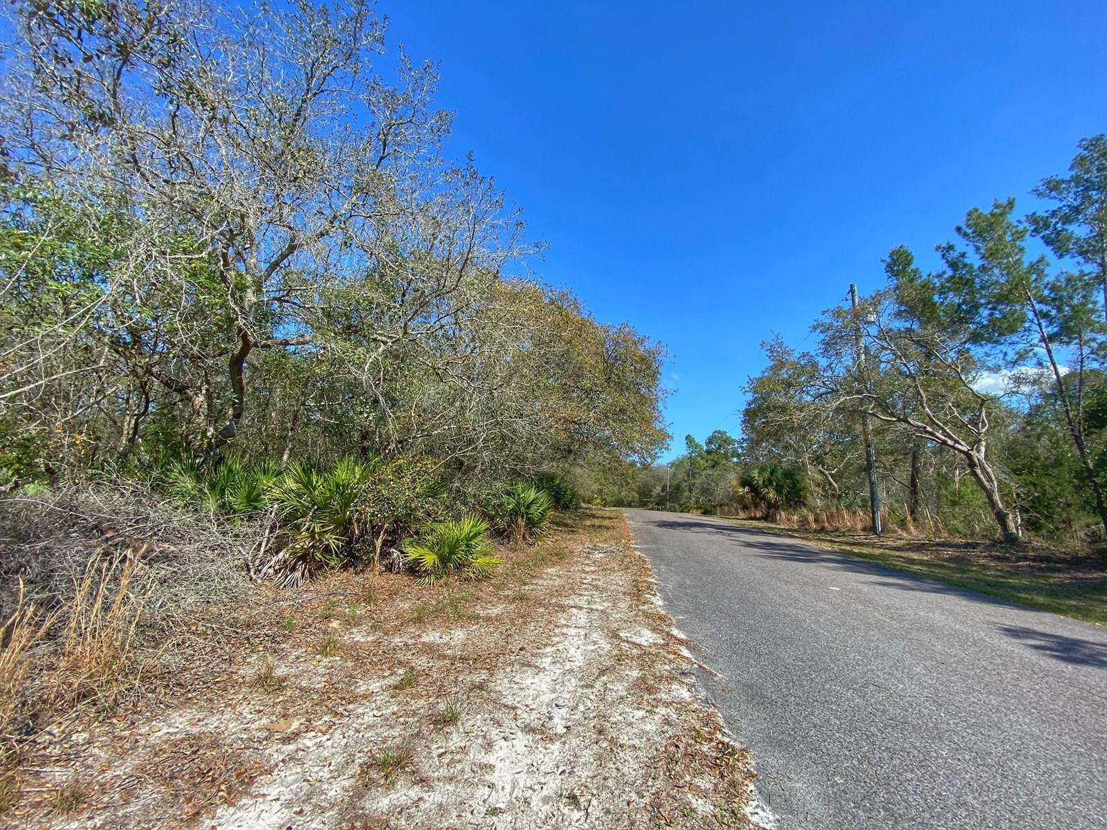 BUILDABLE LOT IN SUWANNEE RIVER SPRINGS SUBDIVISION!