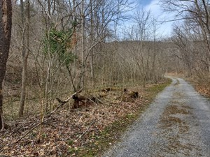LARGE RECREATIONAL PROPERTY FOR SALE IN NARROWS VA!