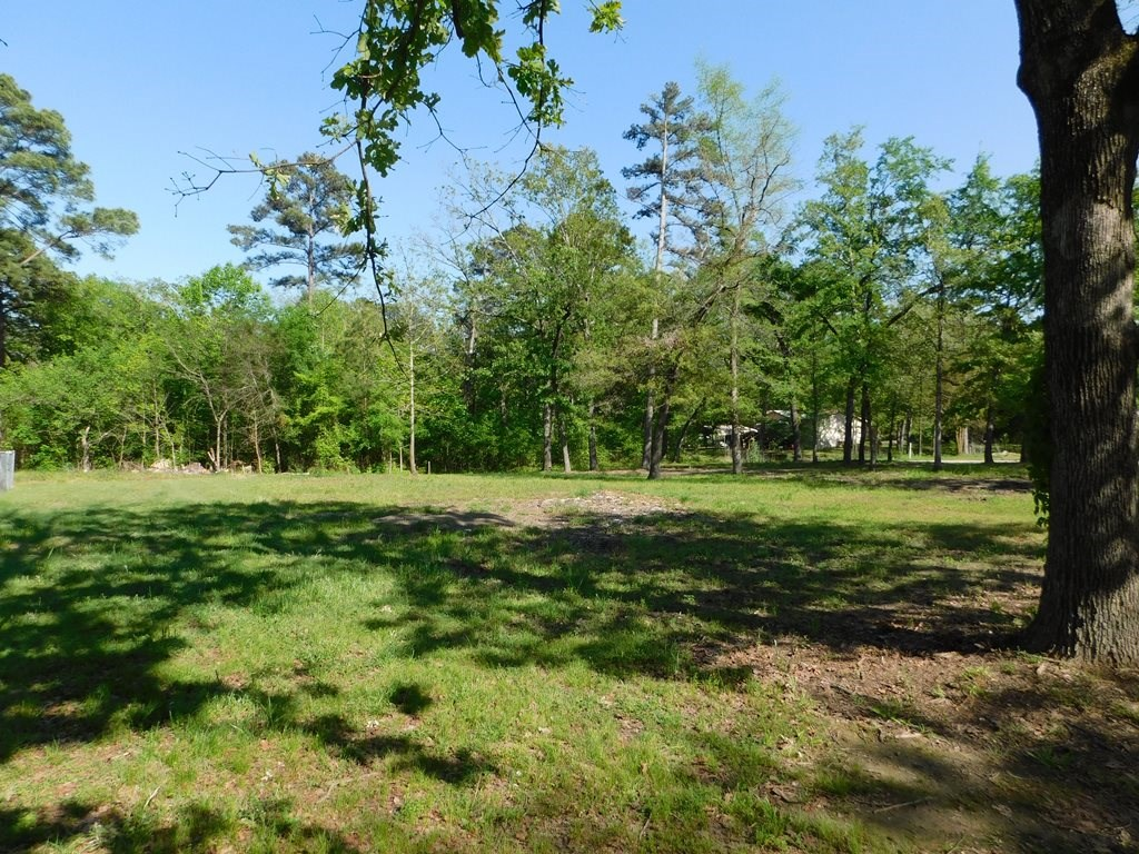 VACANT LOTS FOR SALE IN LAKE PALESTINE COMMUNITY | EAST TX