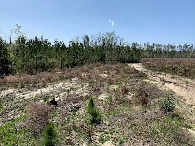 Home for Sale in Jackson County, Fl