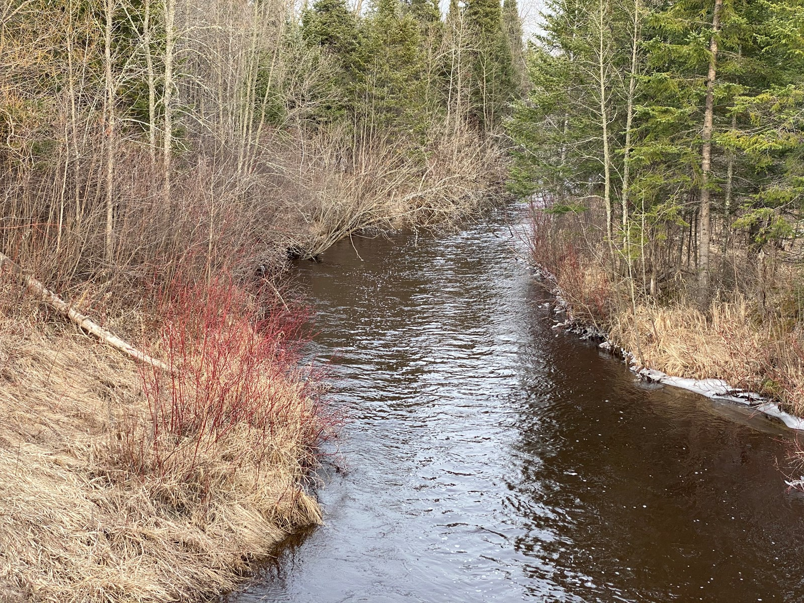 Hunting Acreage for Sale on the Little Whiteface River