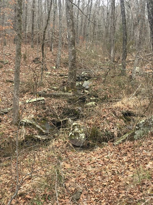 Arkansas Ozarks Cabin/Country Home Land For Sale