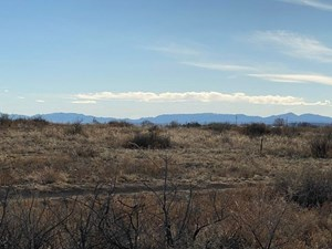 TORRANCE COUNTY, NEW MEXICO HOMESITE PRICED TO SELL