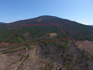 90 ACRE RECREATIONAL PROPERTY ON SUGAR LOAF MOUNTAIN